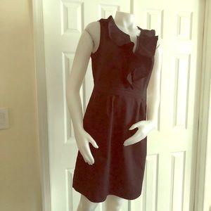 Ann Taylor LOFT Cotton Dress 12P
